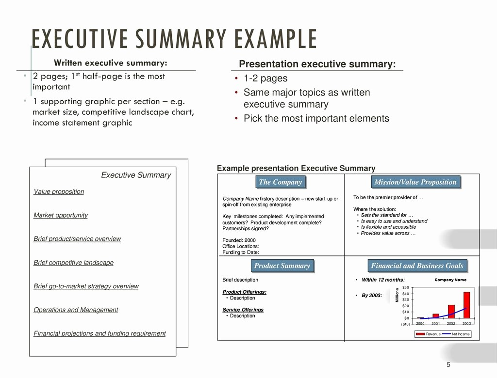 1 Page Executive Summary Example Awesome the Business Plan Presentation Ppt Video Online