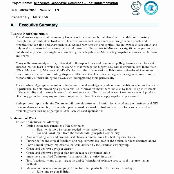 1 Page Executive Summary Example Elegant Sample Executive Summary A Report Template Test for