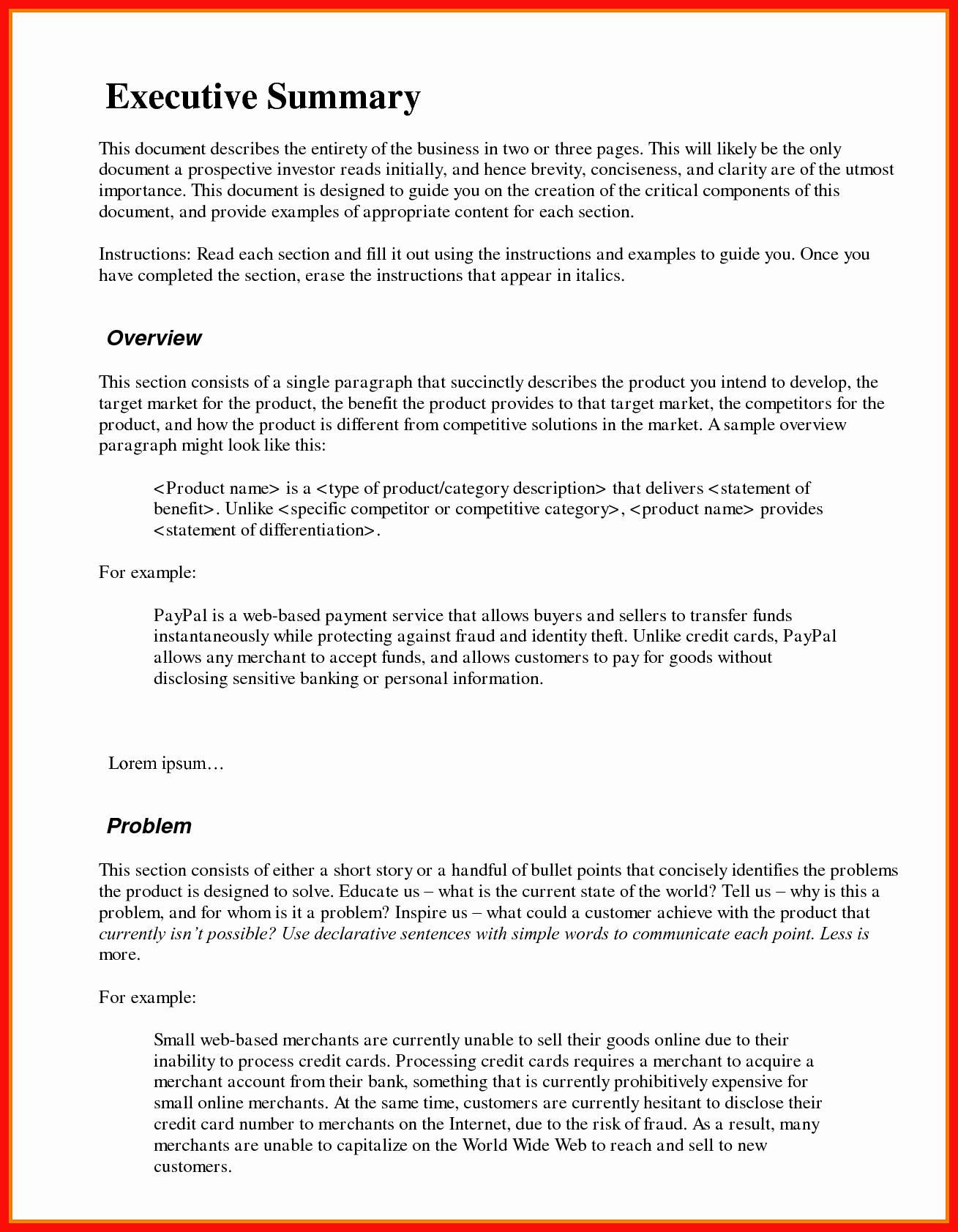 1 Page Executive Summary Example Unique Executive Summary Example