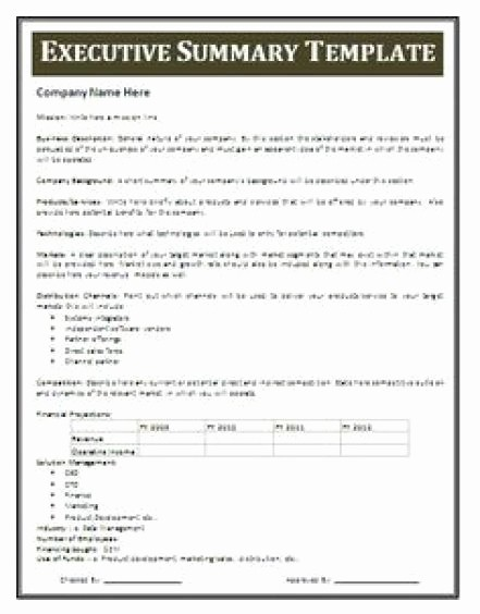 1 Page Executive Summary Template Best Of 13 Executive Summary Templates Excel Pdf formats
