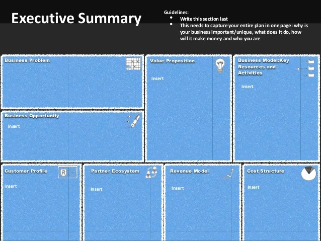 1 Page Executive Summary Template Elegant Business Planning Template