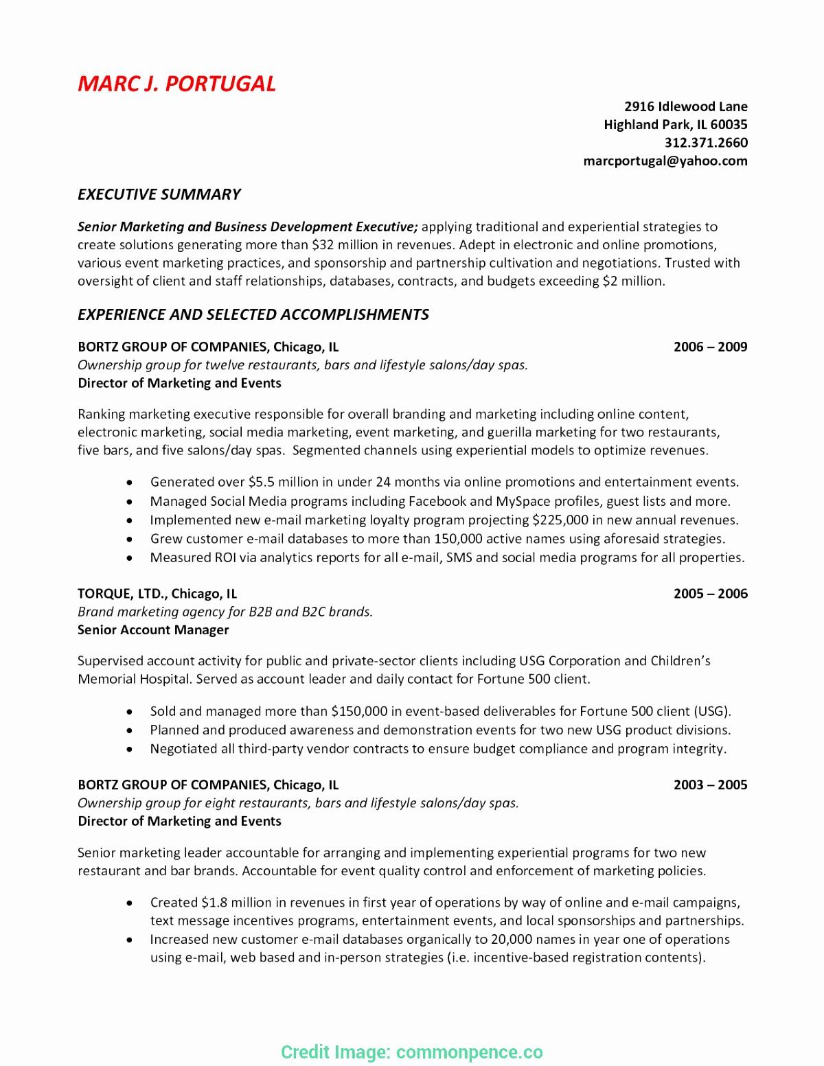 1 Page Executive Summary Template Luxury E Page Executive Summary Sample 8 – Band Ible
