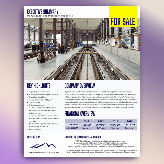 1 Page Executive Summary Template Luxury Template for Single Page Executive Summary for Marketing