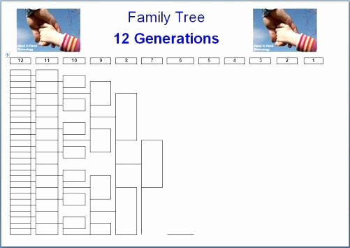 10 Generation Family Tree Excel Best Of Generation Family Tree 8 Template Excel – Template Gbooks