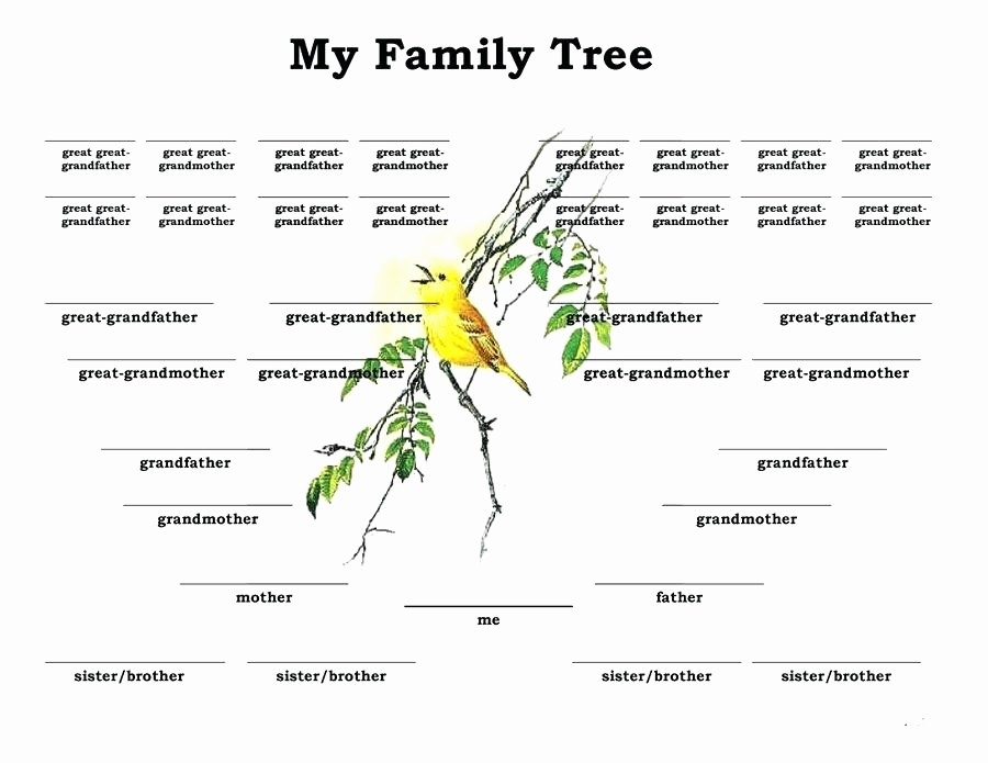 10 Generation Family Tree Excel Lovely Printable Family Tree Free Templates Word Excel Template
