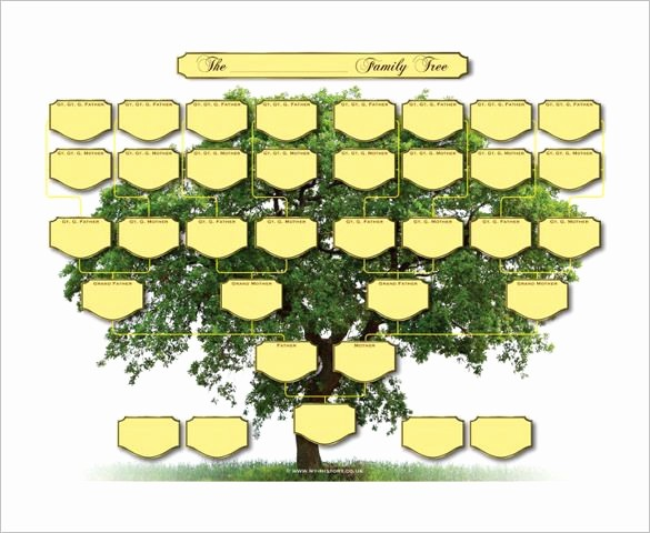 10 Generation Family Tree Template Fresh 5 Generation Family Tree Template – 10 Free Sample