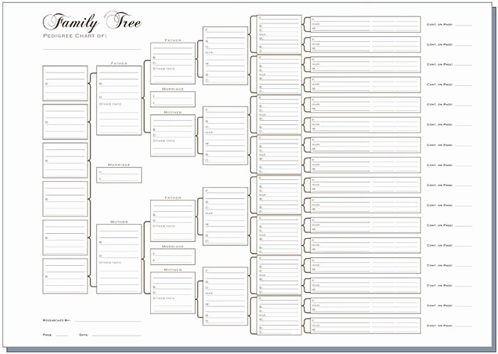 10 Generation Family Tree Template Fresh 有關以下物品的詳細資料: A3 Six Generation Pedigree Chart Pack Of 3