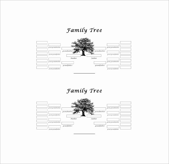 10 Generation Family Tree Template New Five Generation Family Tree Template – 11 Free Word