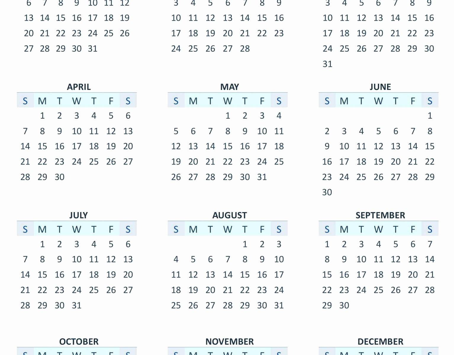 12 Month Calendar Template Word Inspirational Yearly 12 Month Calendar 2019 Template