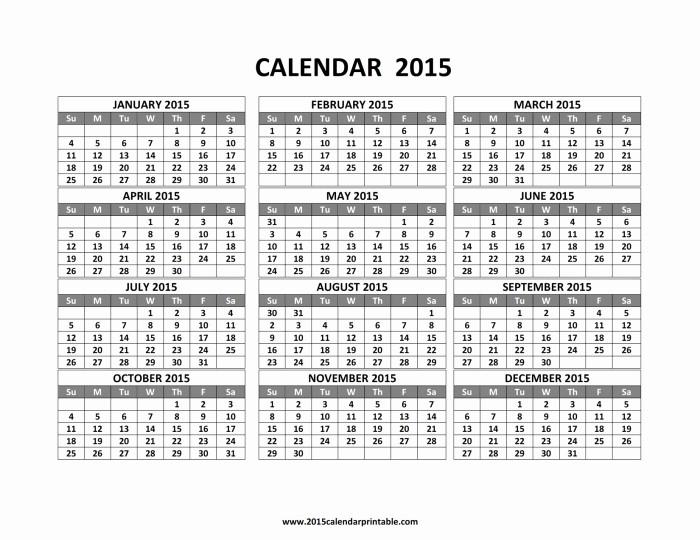 12 Months Calendar 2016 Printable Awesome 12 Month Calendar Template
