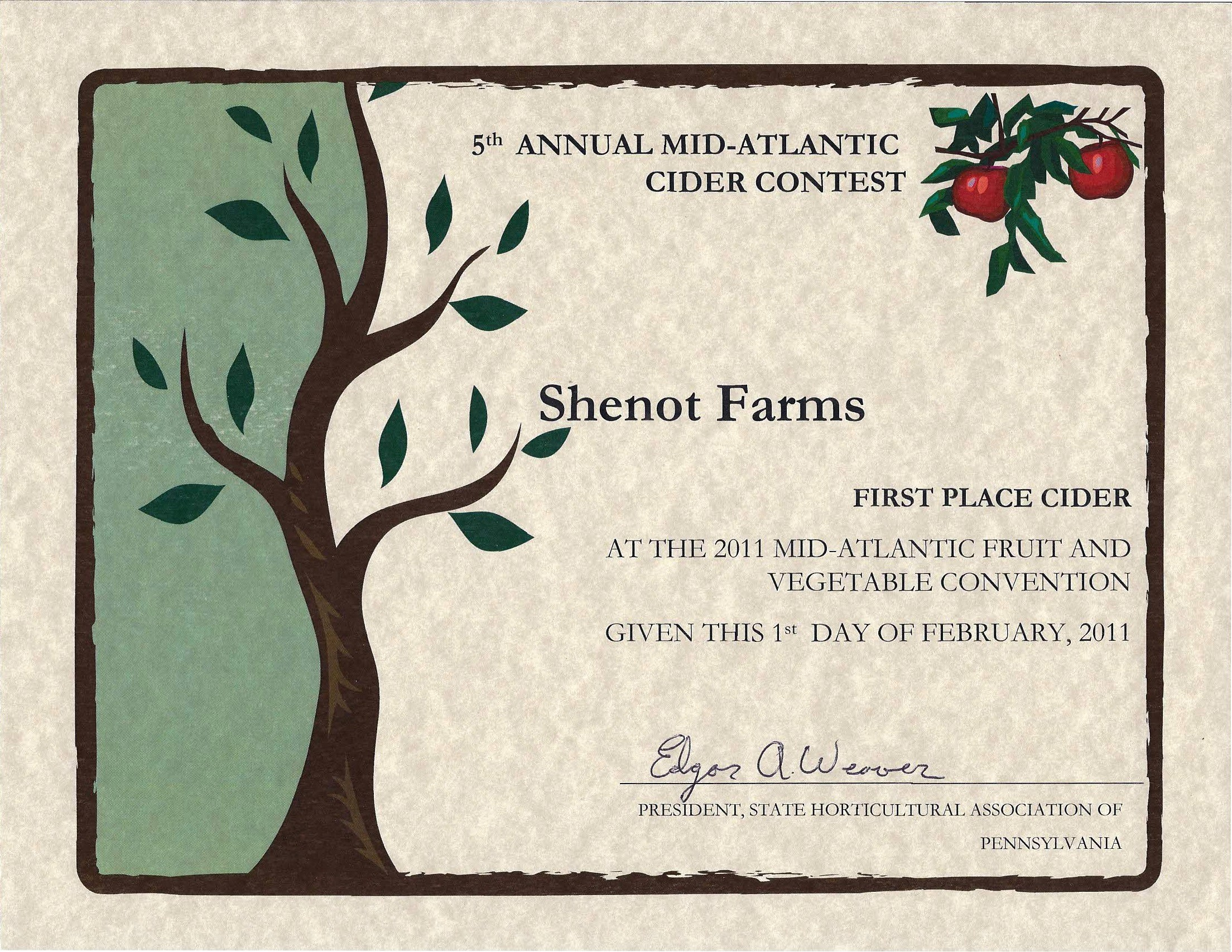 1st Place Certificate Template Word Beautiful Best Ideas Agenda Templates In Word Bridal Shower