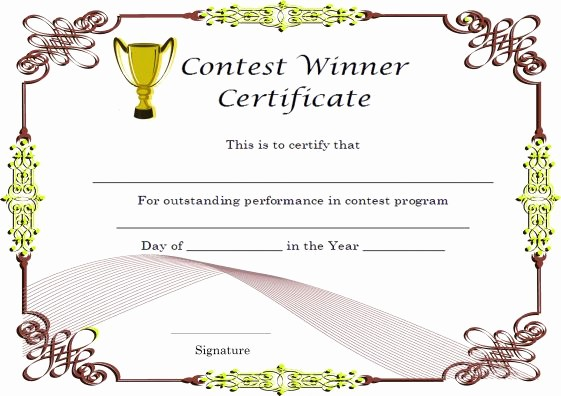 1st Place Certificate Template Word Elegant 5 Winner Certificates