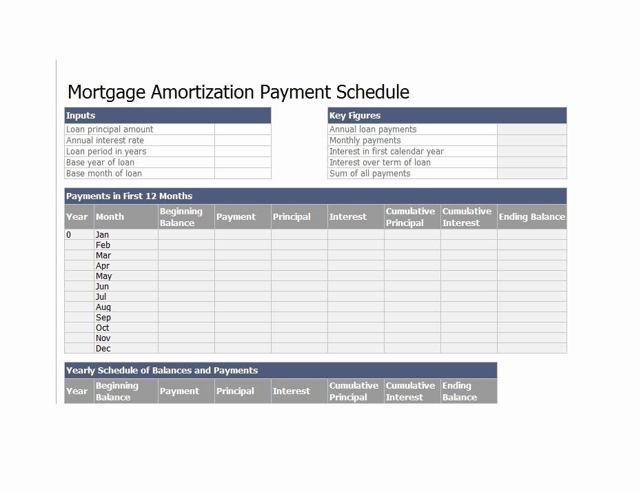 20 Year Amortization Schedule Excel Fresh 28 Tables to Calculate Loan Amortization Schedule Excel