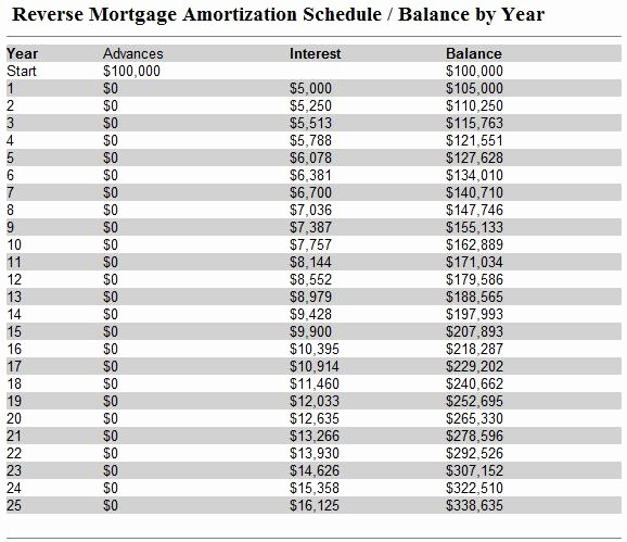 20 Year Amortization Schedule Excel Inspirational Beauty Girls 03 17 11