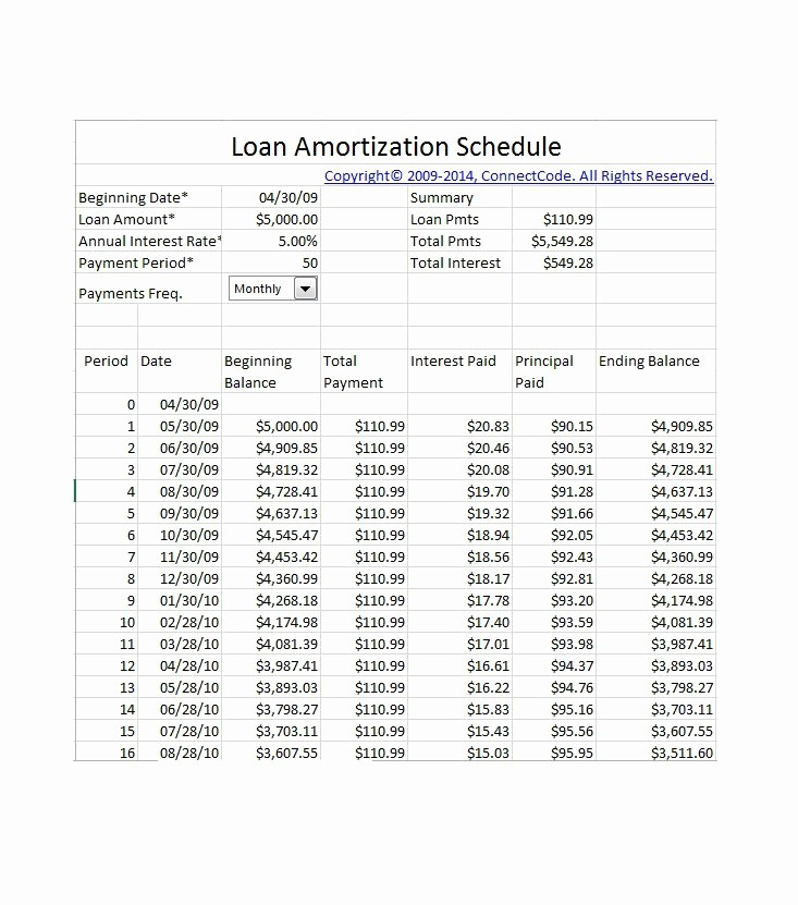 20 Year Amortization Schedule Excel Luxury 5 Year Loan Amortization Table
