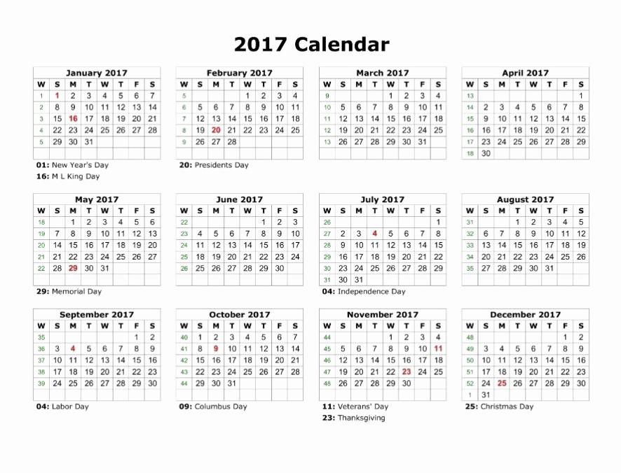 2017 12 Month Calendar Printable Inspirational 12 Month Calendar Template Word Printable 12 Month