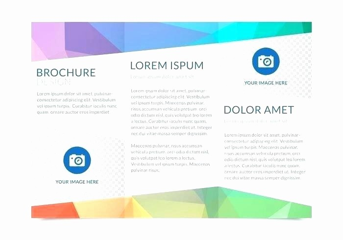 3 Fold Brochure Template Word Awesome 3 Fold Brochure Template Word 2003 Oilblogfo