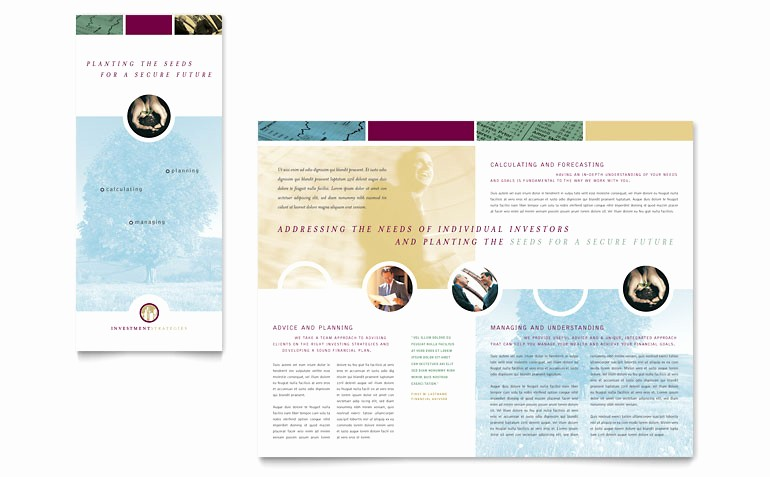 3 Fold Brochure Template Word Luxury Financial Consulting Tri Fold Brochure Template Word