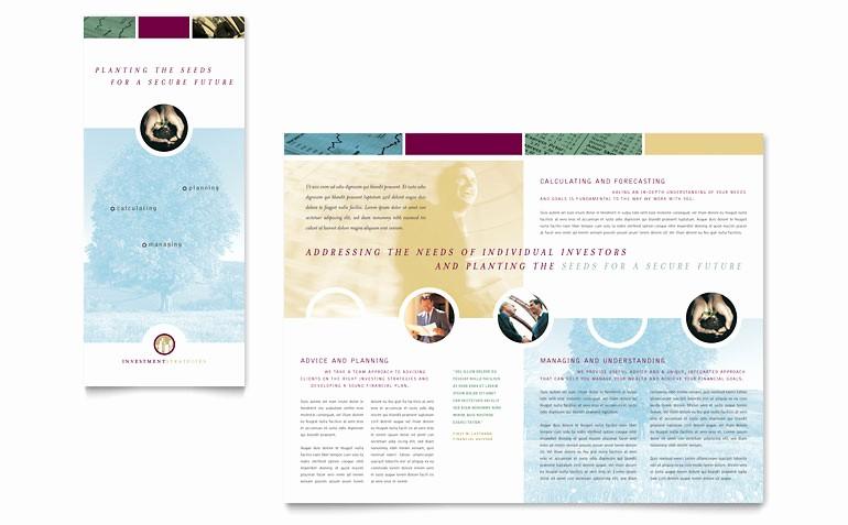 3 Fold Brochure Template Word Luxury Financial Consulting Tri Fold Brochure Template Word