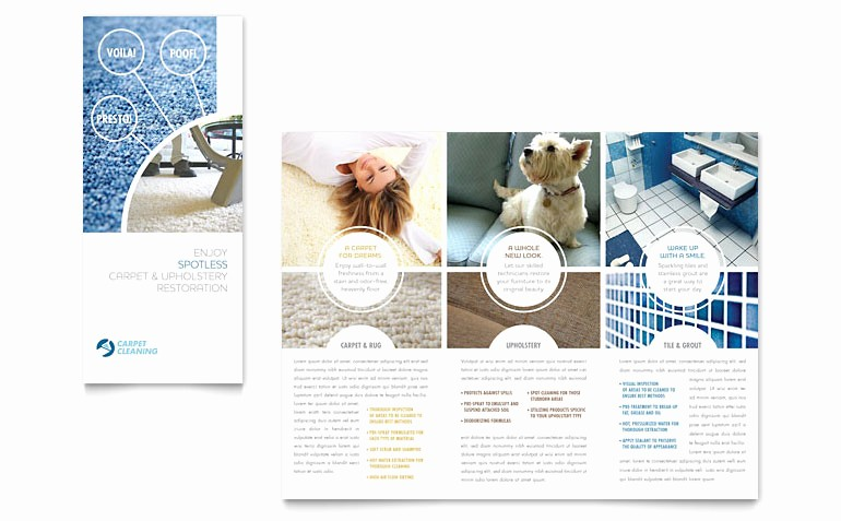 3 Fold Brochure Template Word New Carpet Cleaning Tri Fold Brochure Template Word & Publisher