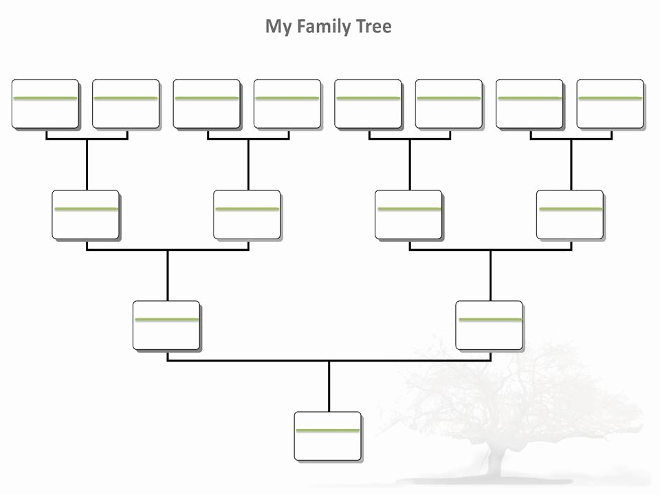 5 Generation Family Tree Template Beautiful Blank Family Tree Template