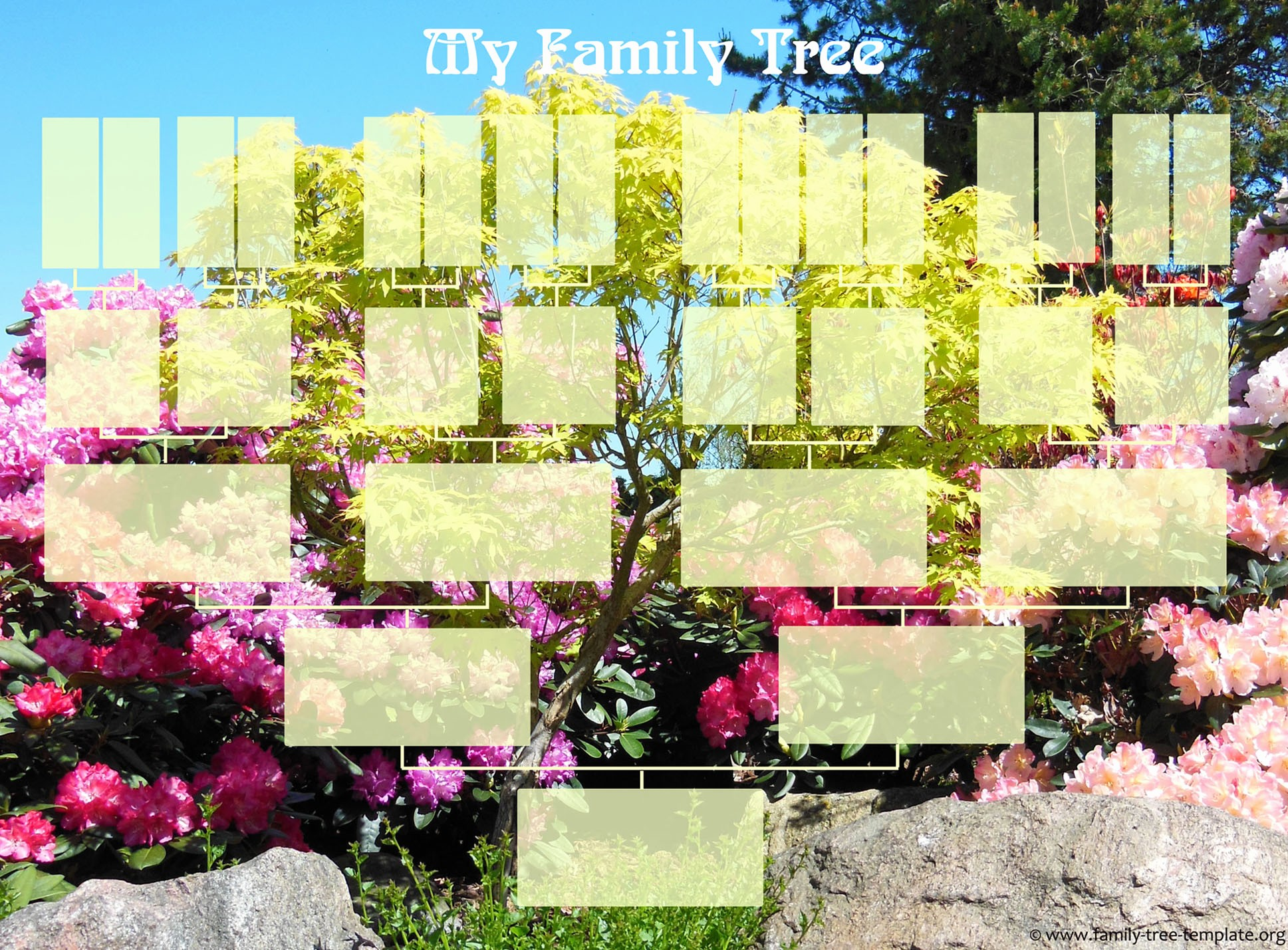 5 Generation Family Tree Template Elegant Free Family Tree Templates Using Free Ancestry
