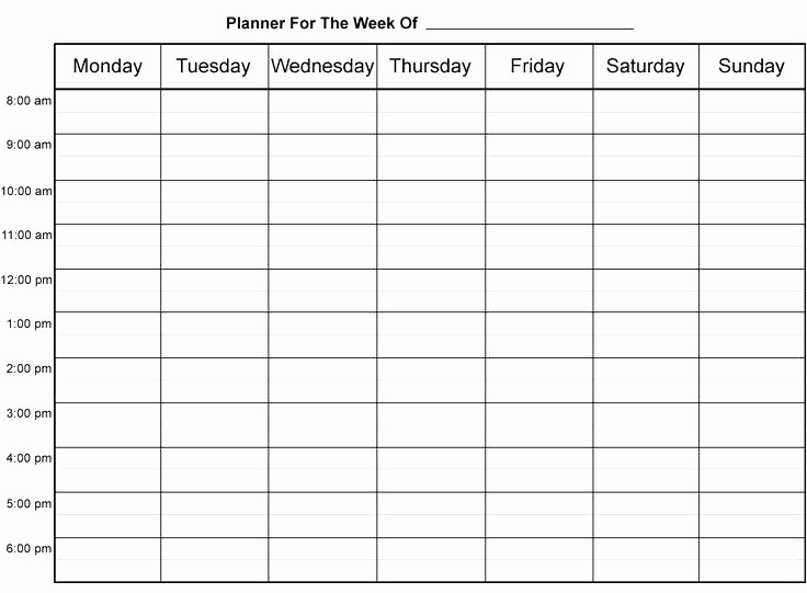 7 Day Calendar with Hours Fresh 9 Hourly Schedule Template Printable Pdf – Meetwithlisafo