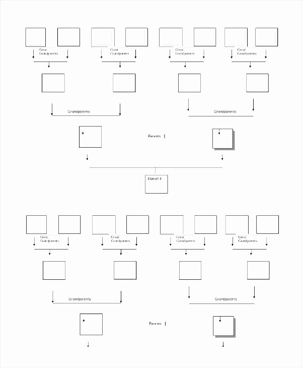 7 Generation Family Tree Template Beautiful Best Family Tree Template – Mediaschoolfo