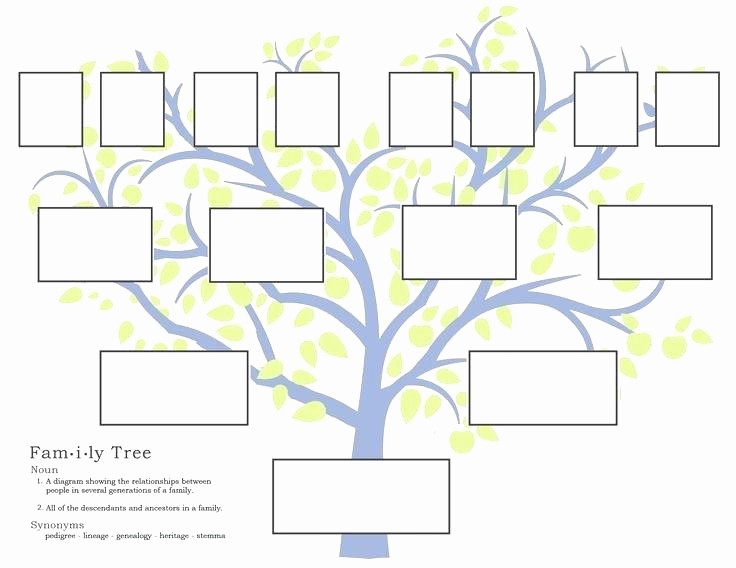 7 Generation Family Tree Template Beautiful Printable Family Tree Template 5 Generations – Midcitywest