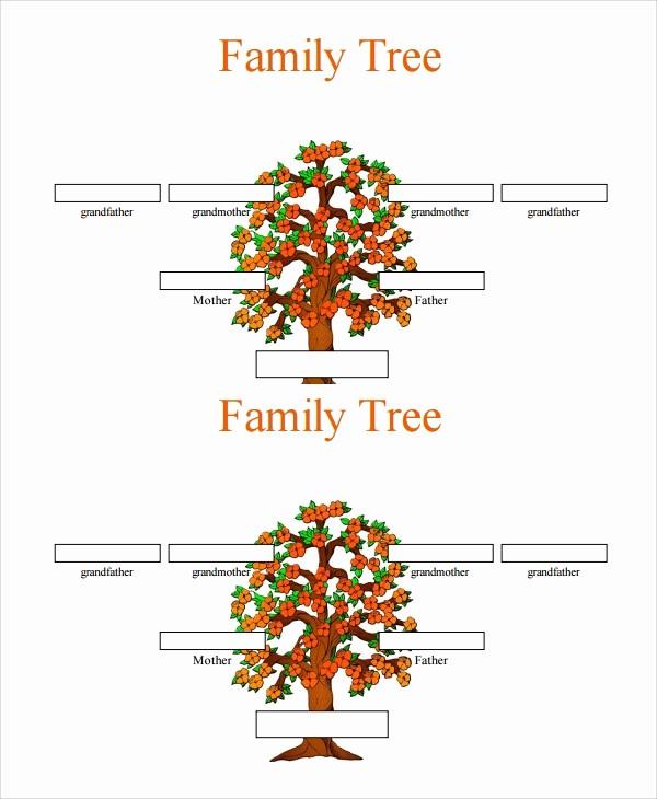7 Generation Family Tree Template Elegant 7 Sample 3 Generation Family Tree Templates