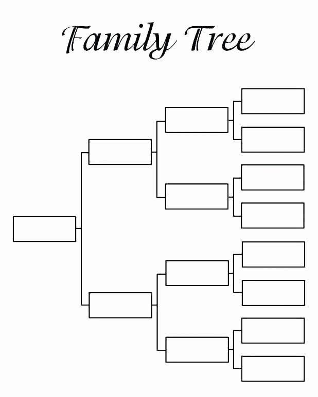 7 Generation Family Tree Template Elegant Printable Family Tree Template Free Templates 6