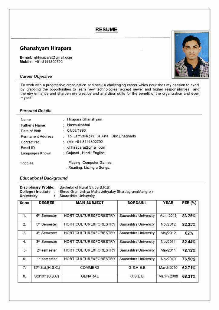 A Template for A Resume Lovely Resume format Resume Cv
