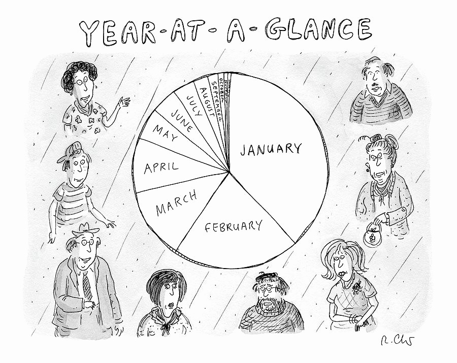 A Year at A Glance Awesome Year at A Glance A Pie Chart the Months by Roz Chast