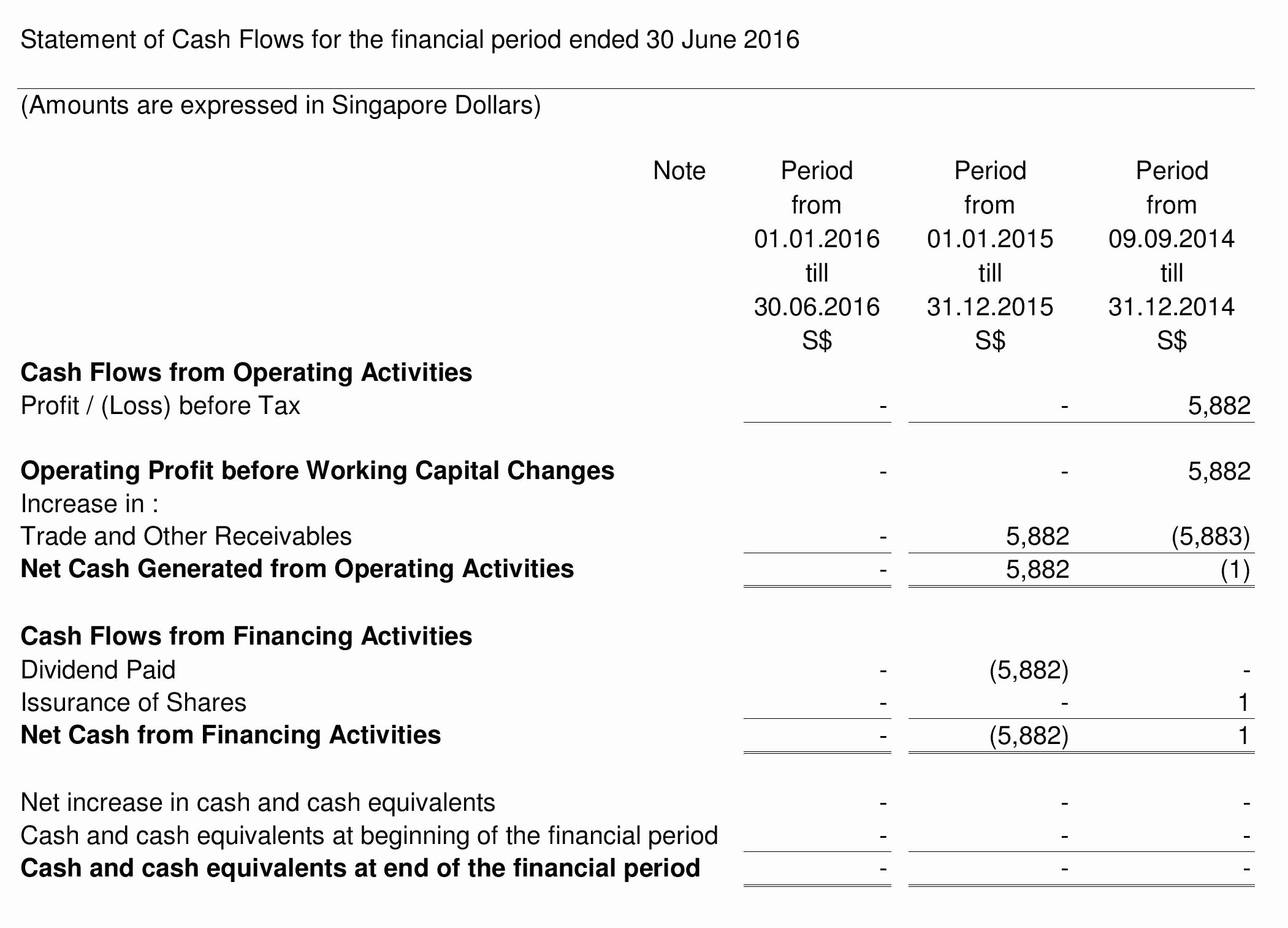 Annual Profit and Loss Statement Elegant Annual Profit and Loss Statement Template Example