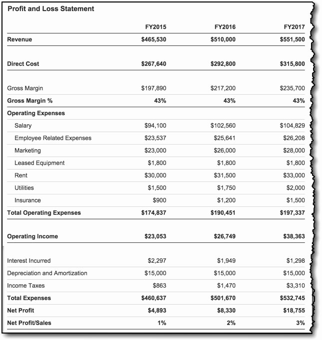 Annual Profit and Loss Statement Lovely Profit and Loss with Liveplan