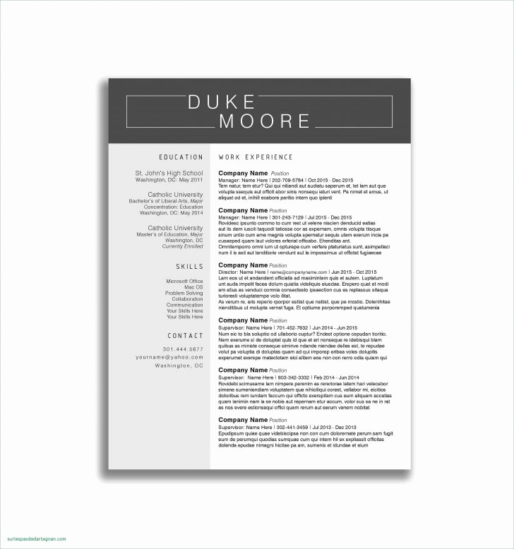 Apa format Template Open Office Lovely Best Openoffice Resume Template Tag Extraordinary Open