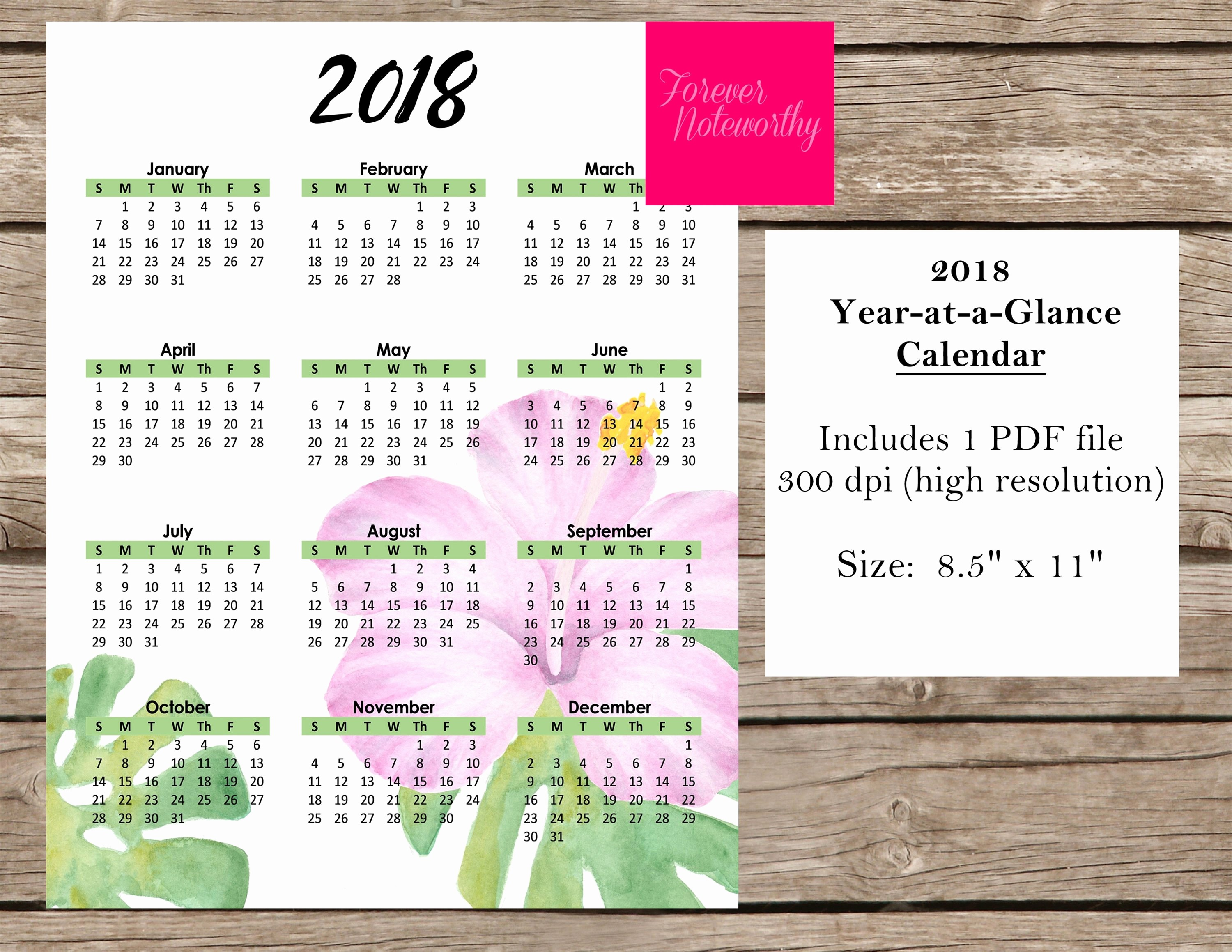 At A Glance 2018 Calendar Inspirational Printable 2018 Calendar Year at A Glance Instant Download