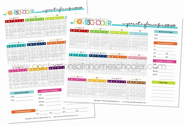 At A Glance 2018 Calendar Unique 2018 2019 Year at A Glance Calendar Printable