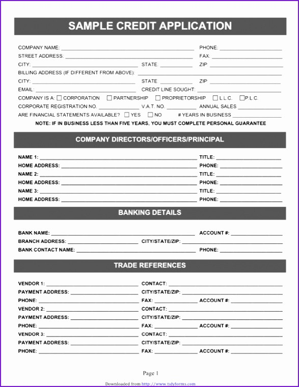 Auto Credit Application form Template Lovely Auto Credit Application Template Credit Application form