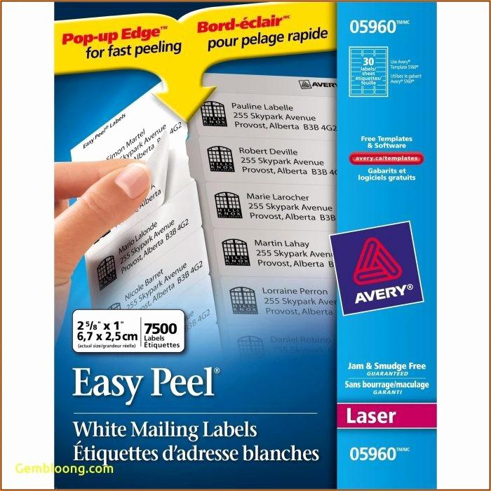 Avery Return Address Labels 5267 Best Of Avery Return Address Labels Template 5267 Template 1