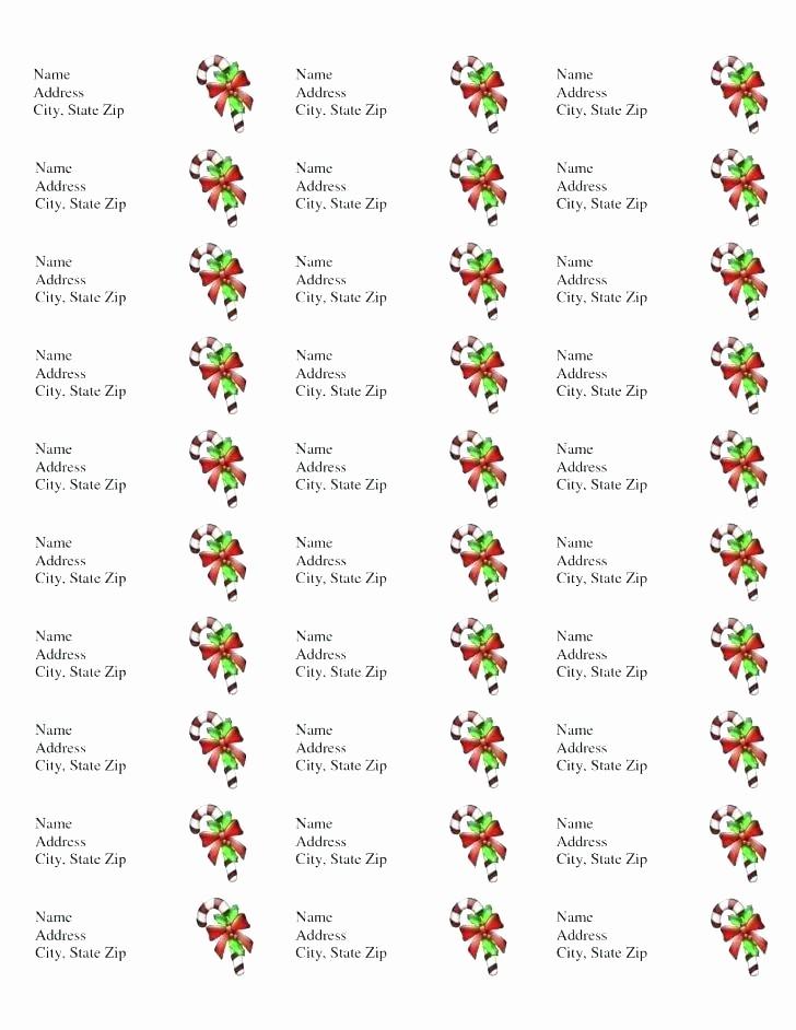 Avery Template Return Address Labels Lovely Address Labels Template Christmas Return Avery 8167