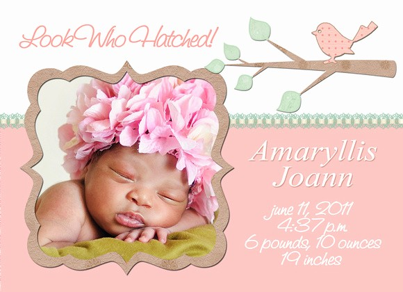 Baby Girl Birth Announcements Template Fresh Mick Luvin Photography