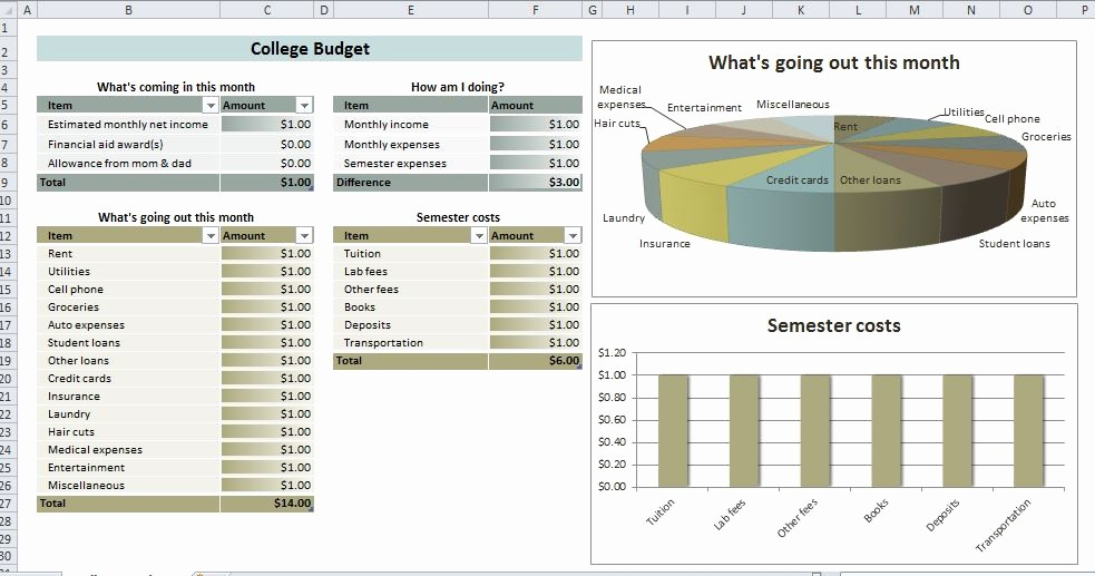 Basic Budget Worksheet College Student Luxury College Student Bud