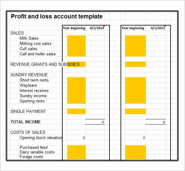 Basic Profit and Loss Template Fresh 19 Sample Profit and Loss Templates