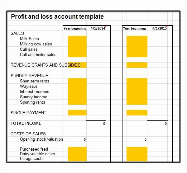 Basic Profit and Loss Template Fresh 19 Sample Profit and Loss Templates