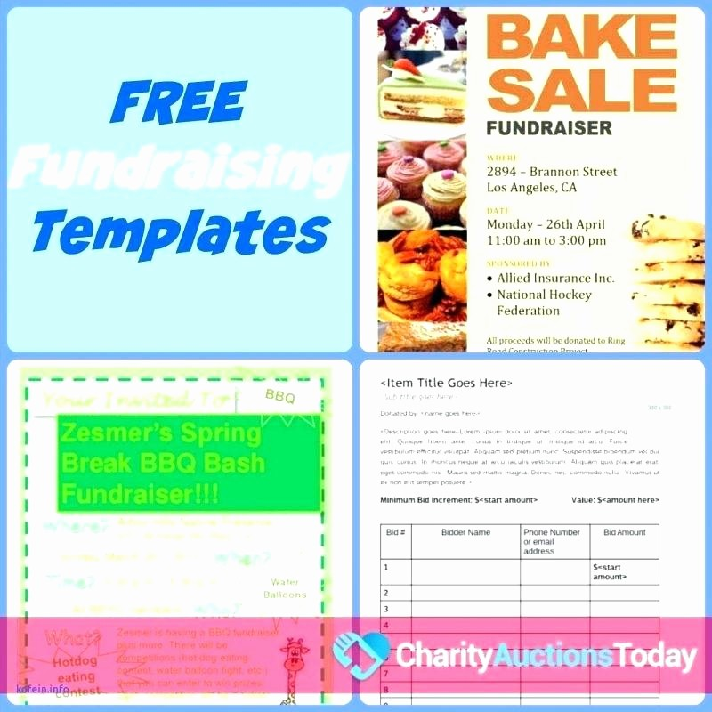 Bbq Fundraiser Flyer Templates Free Luxury Fundraiser Brochure Template Fundraising Brochure Template