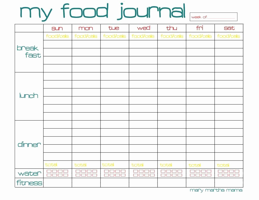 Best Food and Exercise Journal Beautiful the Best Free Diet Journals Bariatric Surgery source