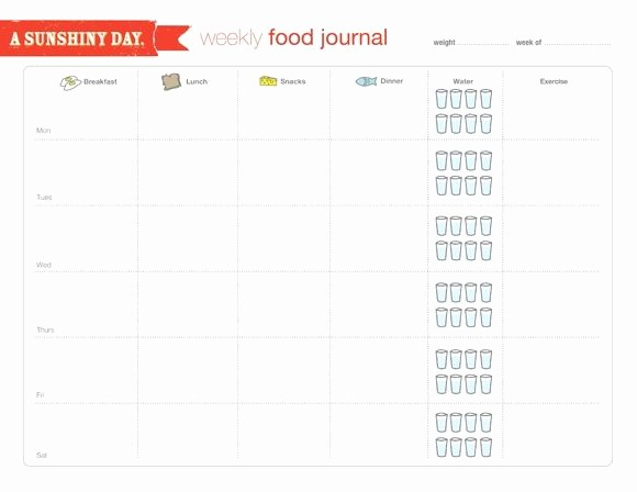 Best Food and Exercise Journal Best Of 25 Best Ideas About Food Journal On Pinterest