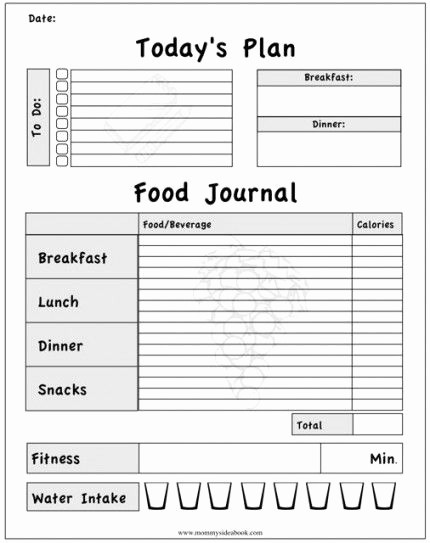 Best Food and Exercise Journal Elegant Printable Workout Journal