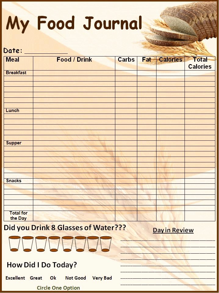 Best Food and Exercise Journal Luxury 6 Food Journal Templates Excel Pdf formats